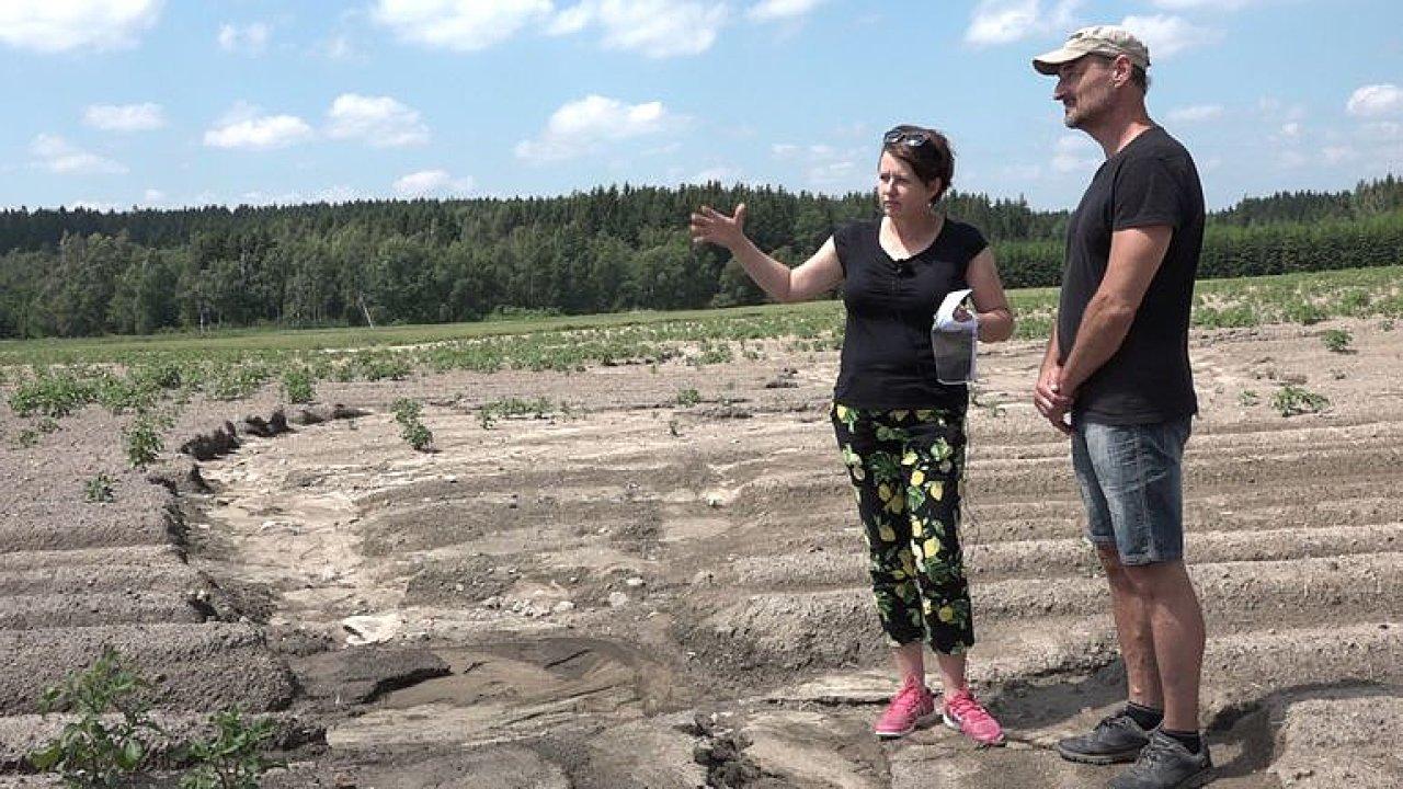 Pole u Žďáru ničí půdní eroze. Voda dokáže odplavit veškerou ornici.