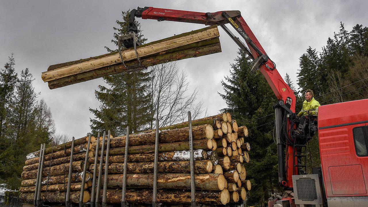 Podle odhadu think-tanku Czech Forest se vroce 2019 kalamitní těžba nacelém území Česka pohybovala mezi 20 a25 miliony kubíků.