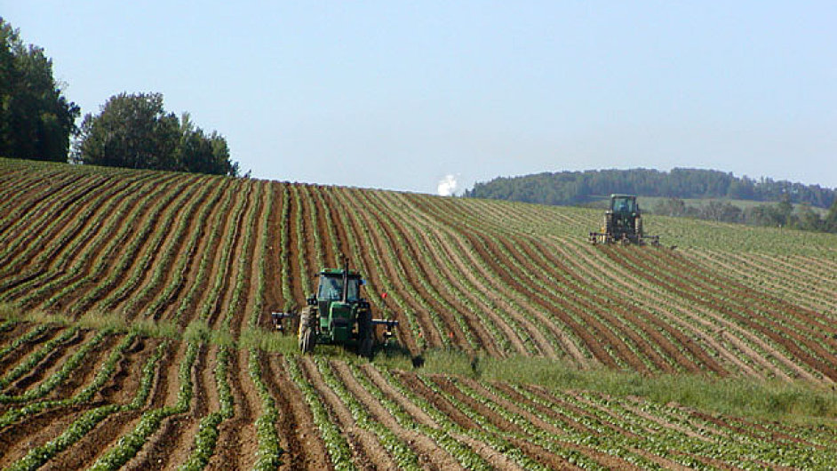 Traktory na bramborovém poli