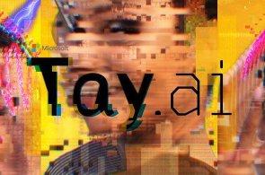 Umělá inteligence od Microsoftu narazila na lidskou zlomyslnost, naučila se rasismu