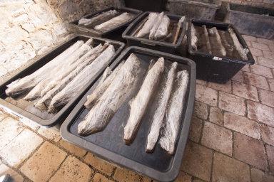 Pro archeology má nález studny veliký význam i díky vyspělé technologii, kterou byla postavena. Na snímku jsou části studny uložené v konzervačním roztoku.