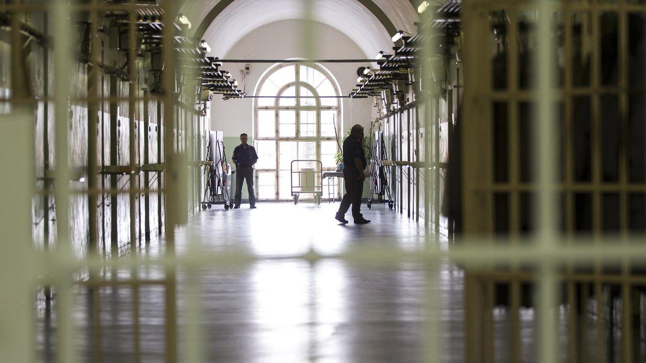 Agenda. Anna Šabatová poukázala na to, že české věznice jsou přeplněné, a zastala se vězně, jenž - ač nemuslim - odmítal jíst vepřové maso.