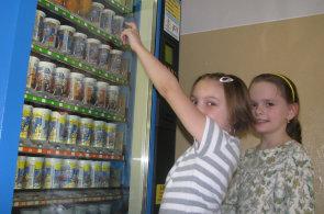 Zdravě ve škole: Děti si nekoupí ani ovocný jogurt