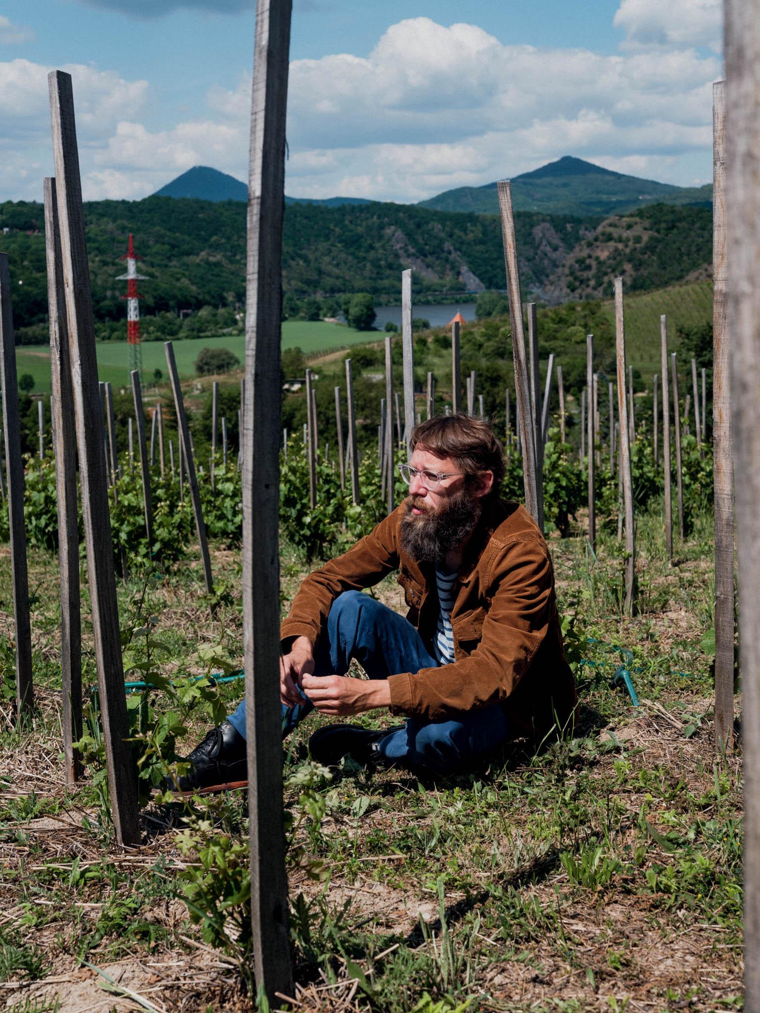 Básník avinař Bogdan Trojak nasvé vinici veVelkých Žernosekách. České středohoří je historicky ceněnou vinnou oblastí, čedičové podloží propůjčuje vínu charakteristickou mineralitu.