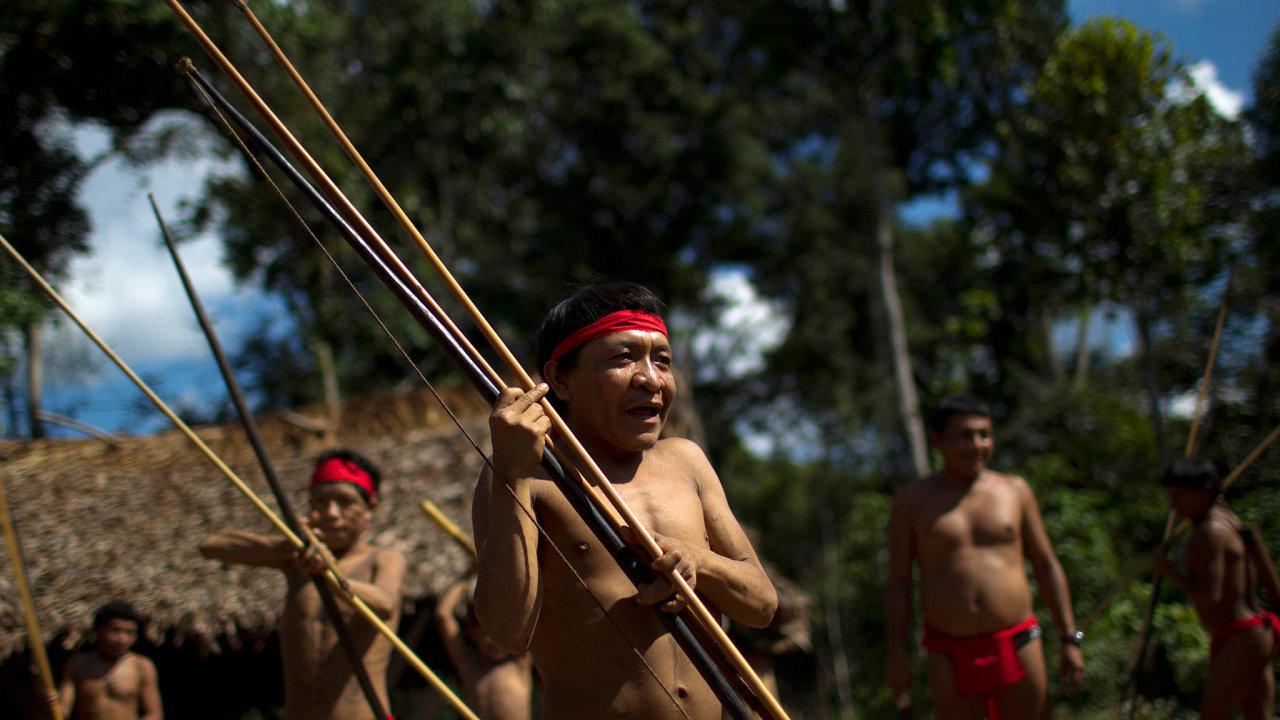 Janomamové vohrožení. Studie Univerzity Minas Gerais tvrdí, že až 40 procent Janomamů žije poblíž nelegálních dolů nazlato.