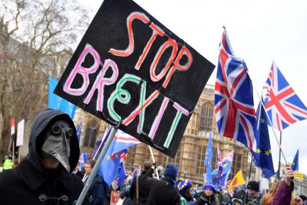 Před Westminsterským palácem se shromažďují demonstranti protestující proti brexitu.
