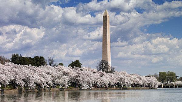 Facebook Výpadek Wikipedia: Uvnitř Washingtonského Památníku: Podívejte Se, Jak Vypadá