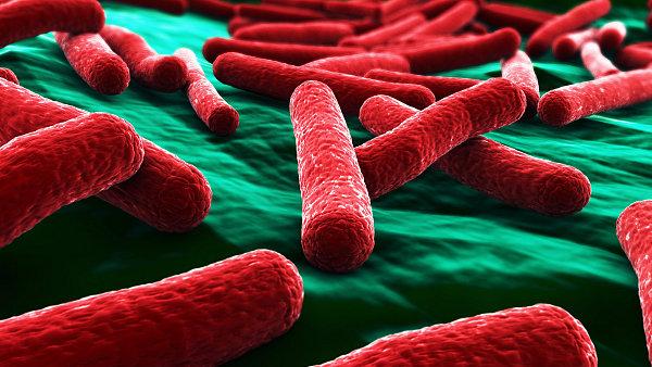 Vir HIV - ilustrační foto
