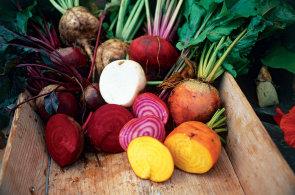 Od zrna po tal��: Francouzsk� obec Ungersheim �ije jen z lok�ln�ch potravin, zavedla dokonce vlastn� m�nu