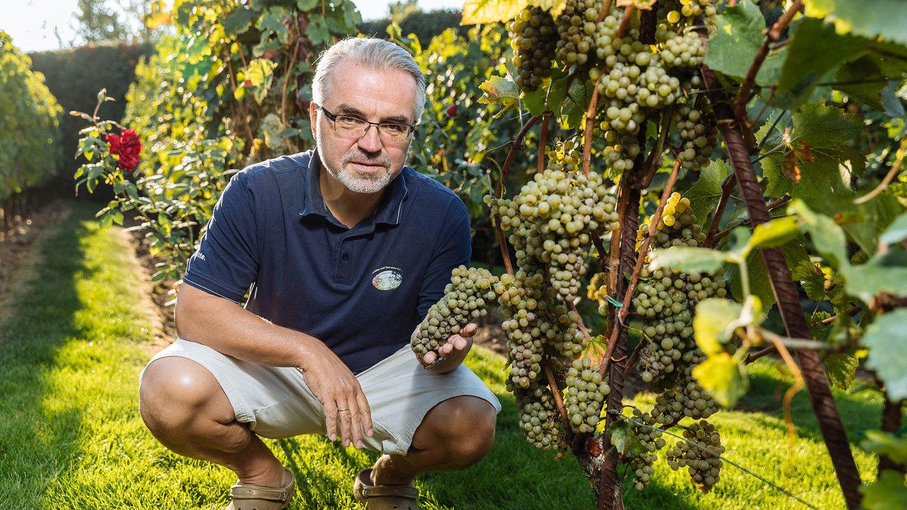 Navinici vpražské Troji. Péče o vinici manažera Tomáše Seidla naučila, že některé věci se nedají urychlit.