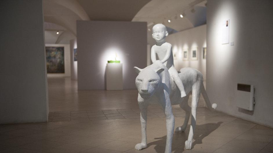 Snímky akvizic z Východočeské galerie