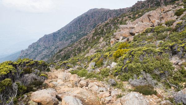 Člověk si v Tasmánii často připadá jako na jiné planetě, říká digitální nomád Matouš Vinš.