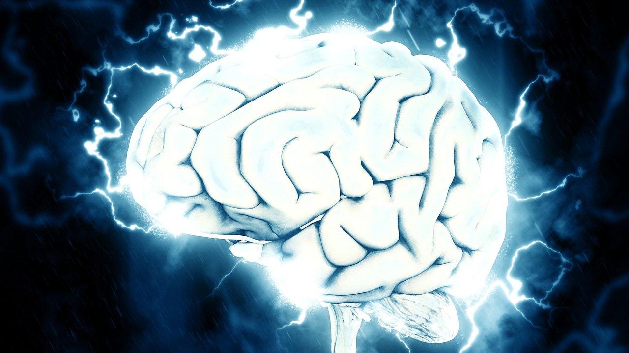 Krátkodobý informační blackout může být pro člověka v informačním přepychu jedinou obranou před prasknutím hlavy.
