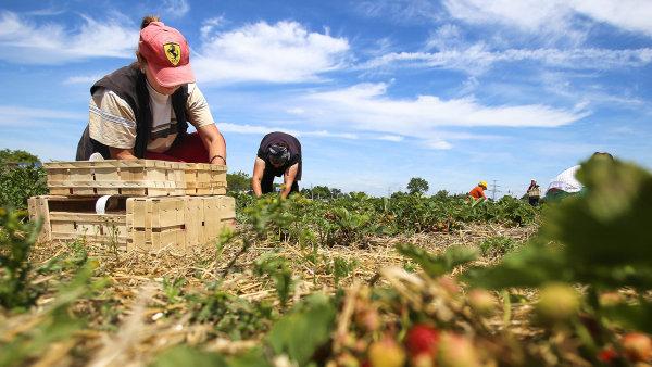 Z evidence úřadů práce odešlo v březnu téměř 49 tisíc lidí. Mnoho z nich našlo uplatnění ve stavebnictví, lázeňství, zemědělství, gastronomii nebo cestovním ruchu.