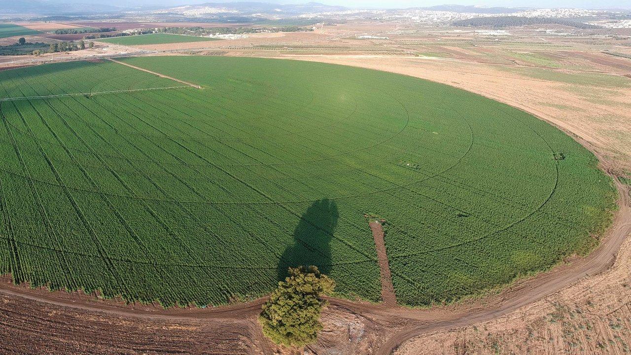 Nápady z Blízkého východu: Izraelští zemědělci bojují se suchem od založení svého státu v roce 1948. Kvůli tomu, že většinu země tvoří poušť, musí vynalézat nová řešení, jak zavlažovat půdu.