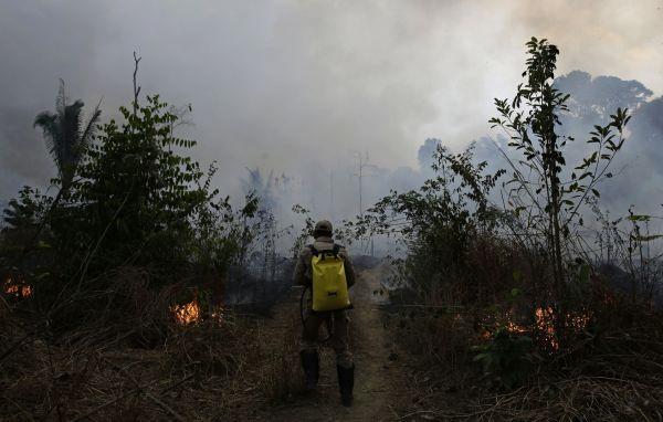 Braziílie, Amazon, prales, požár, Jacunda National Forest