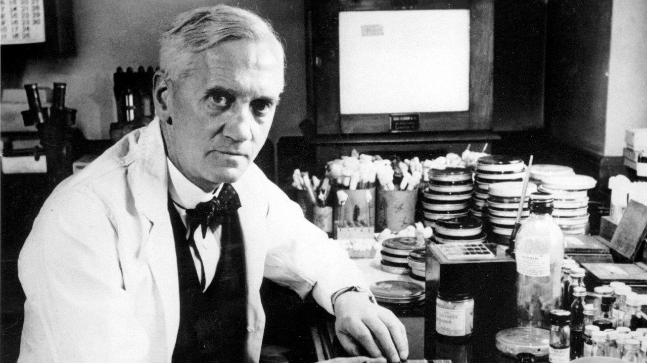 Jeden zotců penicilinu. Skotský lékař Alexander Fleming dostal zaobjev penicilinu adlouholetou víru vjeho perspektivy titul sir iNobelovu cenu astal se globální vědeckou celebritou.