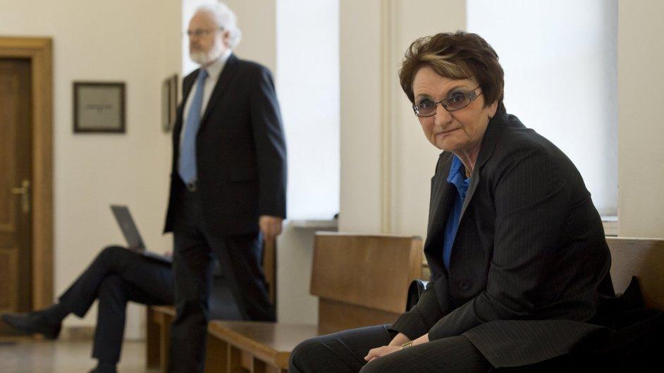 Ředitelka a jednatelka stavební firmy FISA ze Slaného Ivana Salačová