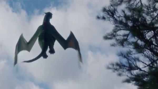 Film M�j kamar�d drak do �esk�ch kin vstoup� v srpnu.