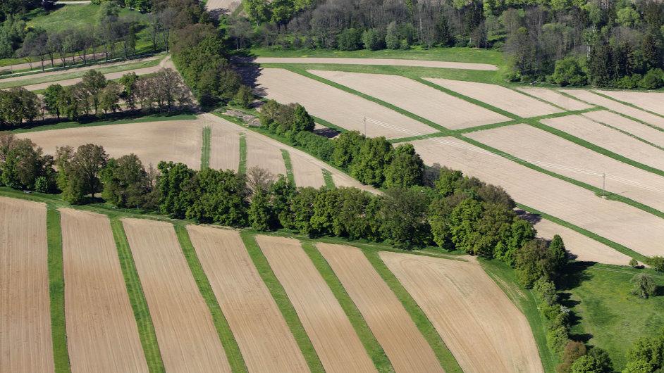 Zemědělská půda je v poslední době mezi investory v Česku hitem.