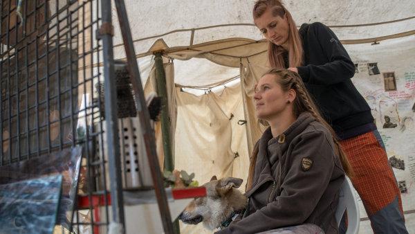 Kadeřnice Klára Jindrová s jednou z účastnic pohraničního experimentu