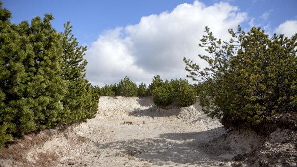 Ložisko lithia v Cínovci je největší v Evropě. Na snímku je pod povrchem zeminy právě ložisko tohoto kovu.