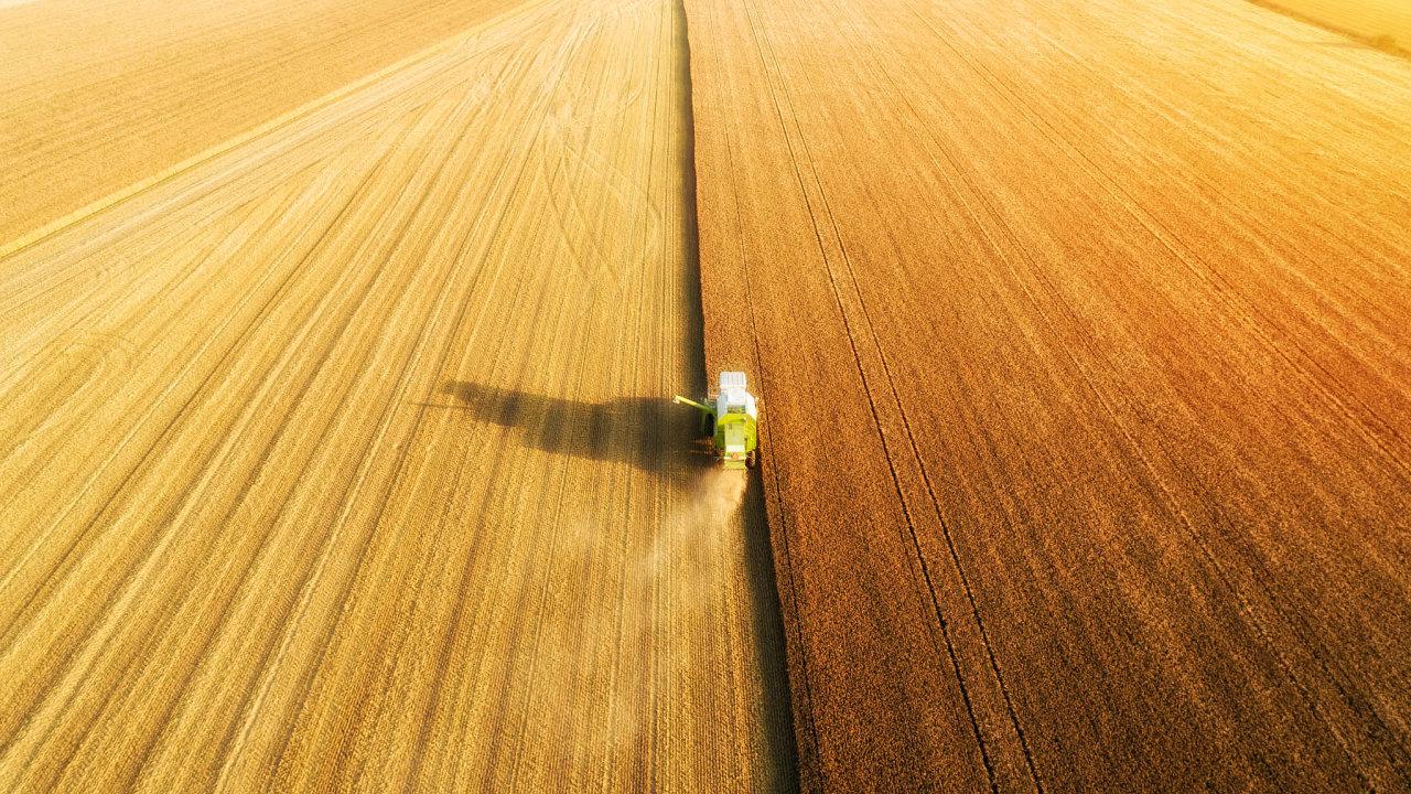 Nepřekonaná minulost. Scelené lány polí jsou něčím, co Evropská unie ve své ekologické politice už nechce, přesto její poslanci ve spojení s ministry členských zemí zabraňují změně podoby krajiny.