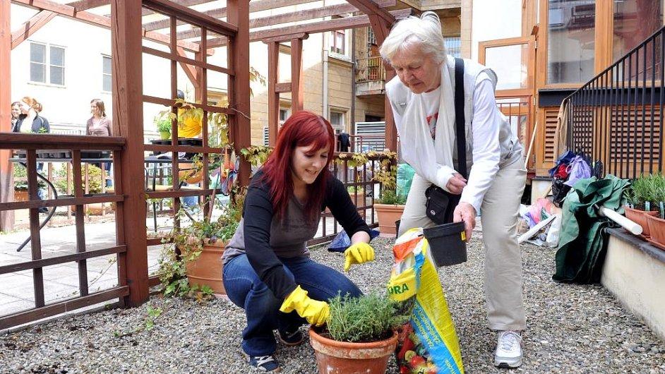 Dobrovolnice z firmy Novartis pomáhá seniorce z organizace Život 90