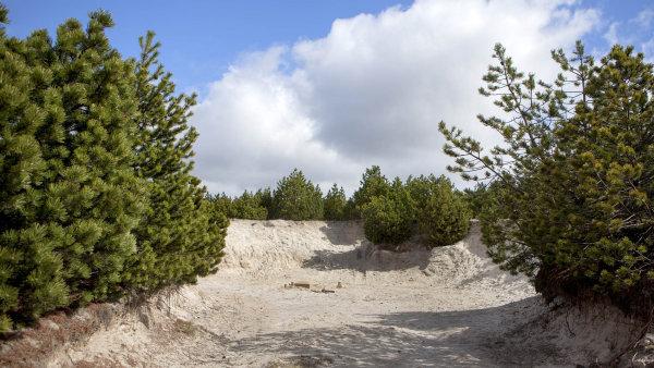 Podle ČSSD memorandum umožní státu podílet se na zisku z budoucí těžby.