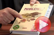 Video: Firma roku 2008