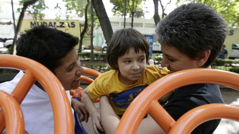 Ústavní soud letos včervnu povolil adopce homosexuálům vregistrovaném partnerství.