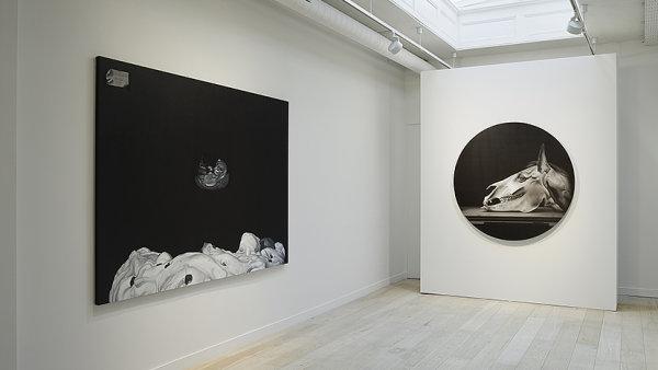 Snímek z výstavy Hynka Martince v londýnské Parafin Gallery.