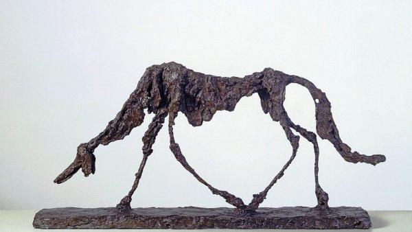 Socha nazvaná Pes z roku 1951 od Alberta Giacomettiho je nyní vystavená v londýnské galerii Tate. Přehlídka by měla doputovat také do Prahy.