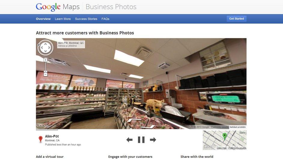 Google Fotografie firem