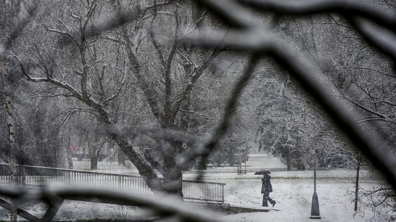 Mráz v Česku na některých místech lámal teplotní rekordy, nejchladněji bylo v Krušných horách – Ilustrační foto.