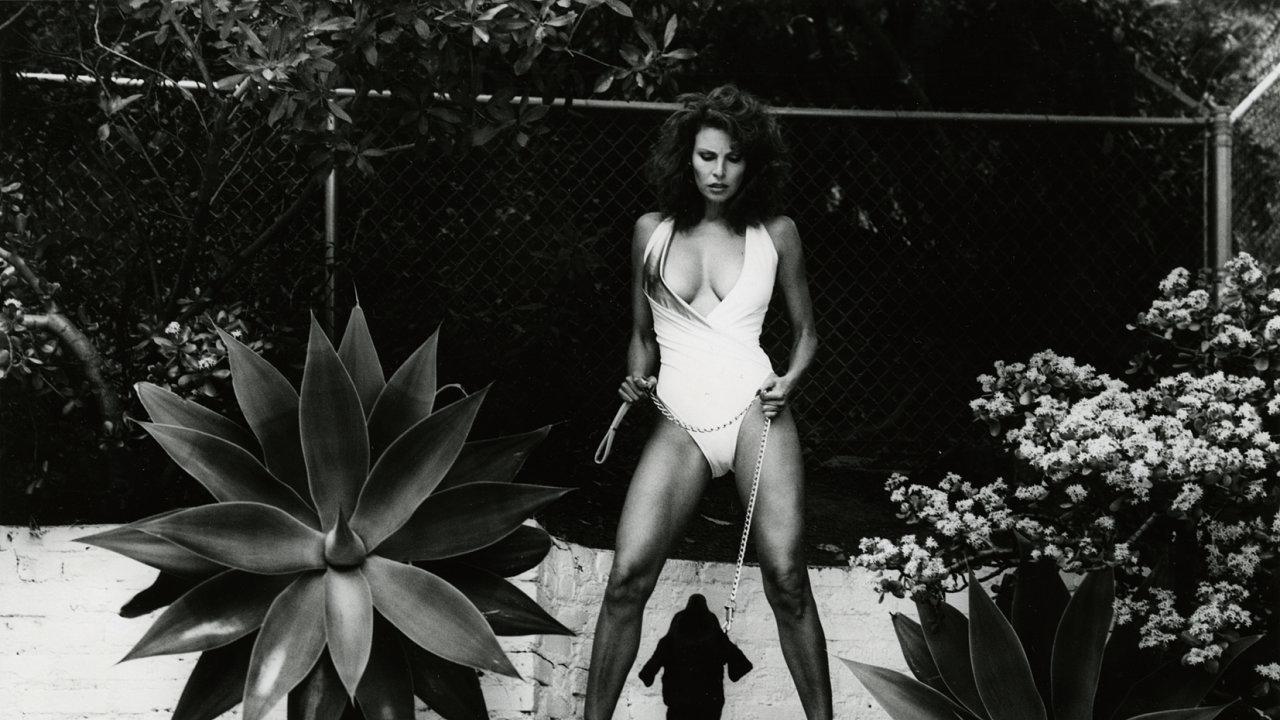 Portrét herečky Raquel Welchové