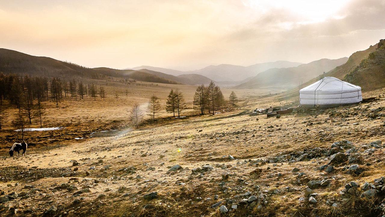 Pastevectví vs. lesy. Mongolské lesy ohrožují ipastevci. Zvířata mohou mladé stromky zcela ožrat. Čeští vědci z Brna pomáhají místním učit se základům zalesňování a udržování lesní kultury.