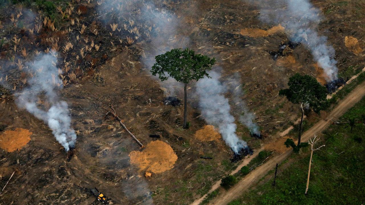 Mizící prales. Z Amazonie se do světa může vydat celá řada virů, pokud jim člověk vezme jejich přirozené prostředí.