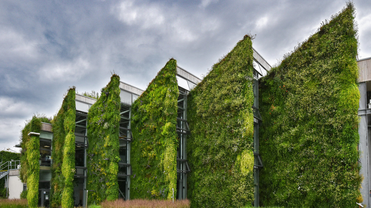 Podle zakladatele a místopředsedy představenstva firmy Liko-S Libora Musila je efekt ochlazování okolního vzduchu nad budovami se zelenou střechou a stěnami neoddiskovatelný (ilustrační snímek).