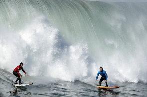 Proti �ralok�m by m�ly pomoci zeb�� pruhy. Speci�ln� obleky pro surfa�e za�ali vyr�b�t v Austr�lii