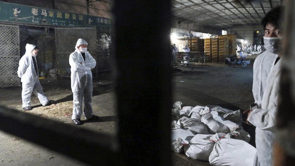 Ptačí chřipka v Číně