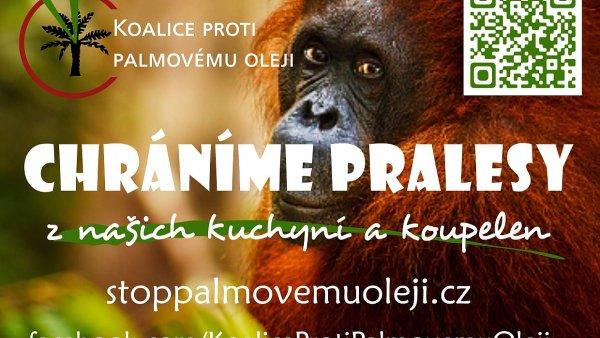 Spotřebitelé mohou na web Koalice proti palmovému oleji vkládat vlastní tipy na výrobky s/bez této ingredience. V databázi výrazně převažují cukrovinky.