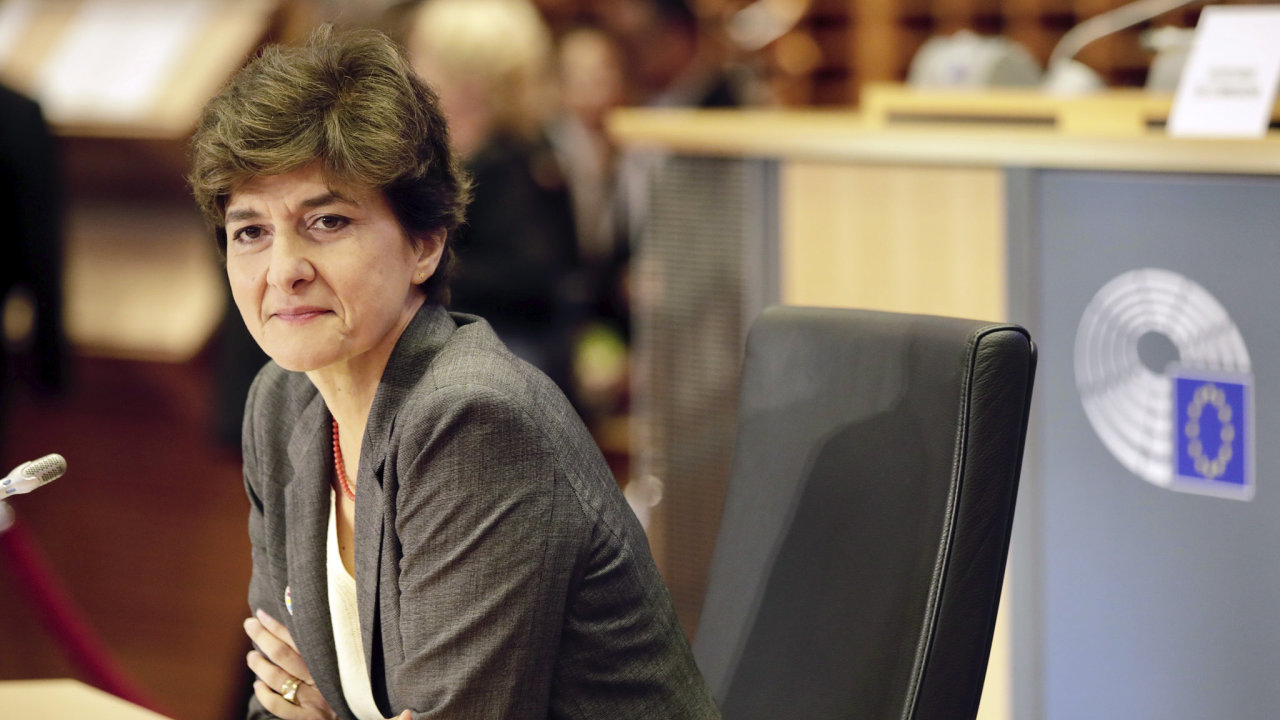 Sylvie Goulardová