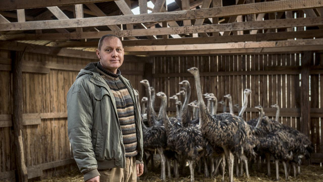 Pštrosí farma Lukáše Krejného vyváží maso kromě jiného také do Německa, Švýcarska nebo Belgie.