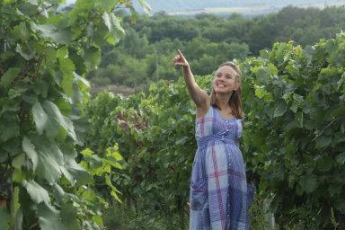 S podporou fondu: Letos bude mít premiéru už třetí díl filmu Bobule, Vinařský fond přispěl na vznik všech dílů milionovými částkami. Filmy podle rady fondu podporují vinařskou turistiku.