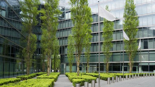 Zelené kanceláře - Ilustrační foto