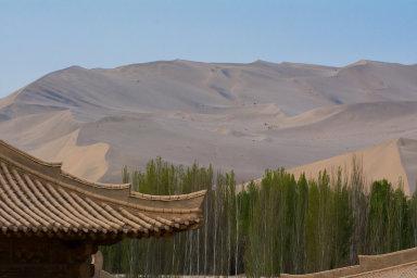 Čína chce do roku 2050 vysázet rozsáhlý pás stromů a keřů podél pouští Gobi a Taklamakan.