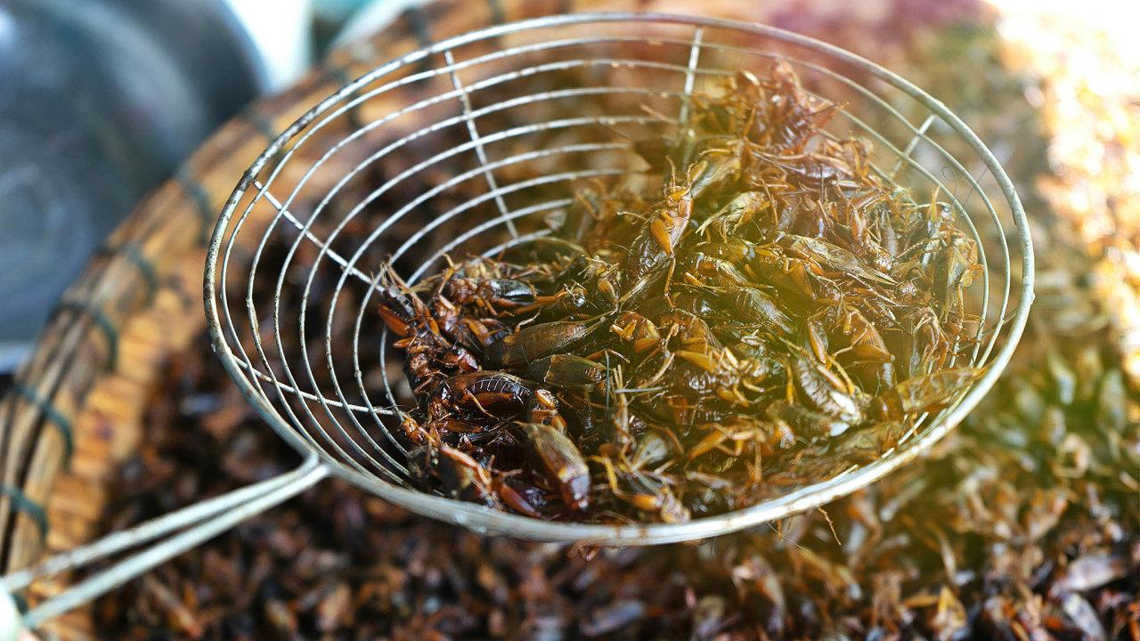 Na větší části planety si lidé vylepšují potravu bezobratlými dodnes, podle údajů OSN hmyz konzumují přibližně dvě miliardy lidí na všech obydlených kontinentech kromě Evropy aSeverní Ameriky.