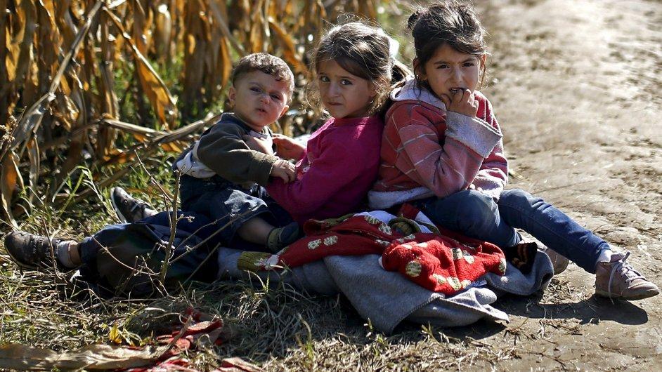 Uprchlíci odpočívají v kukuřičném poli na své cestě do Chorvatska.