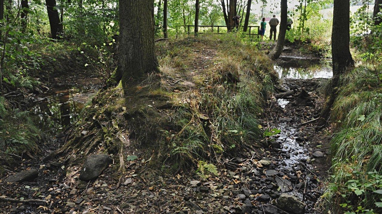 Mehelnický potok v Píseckých horách